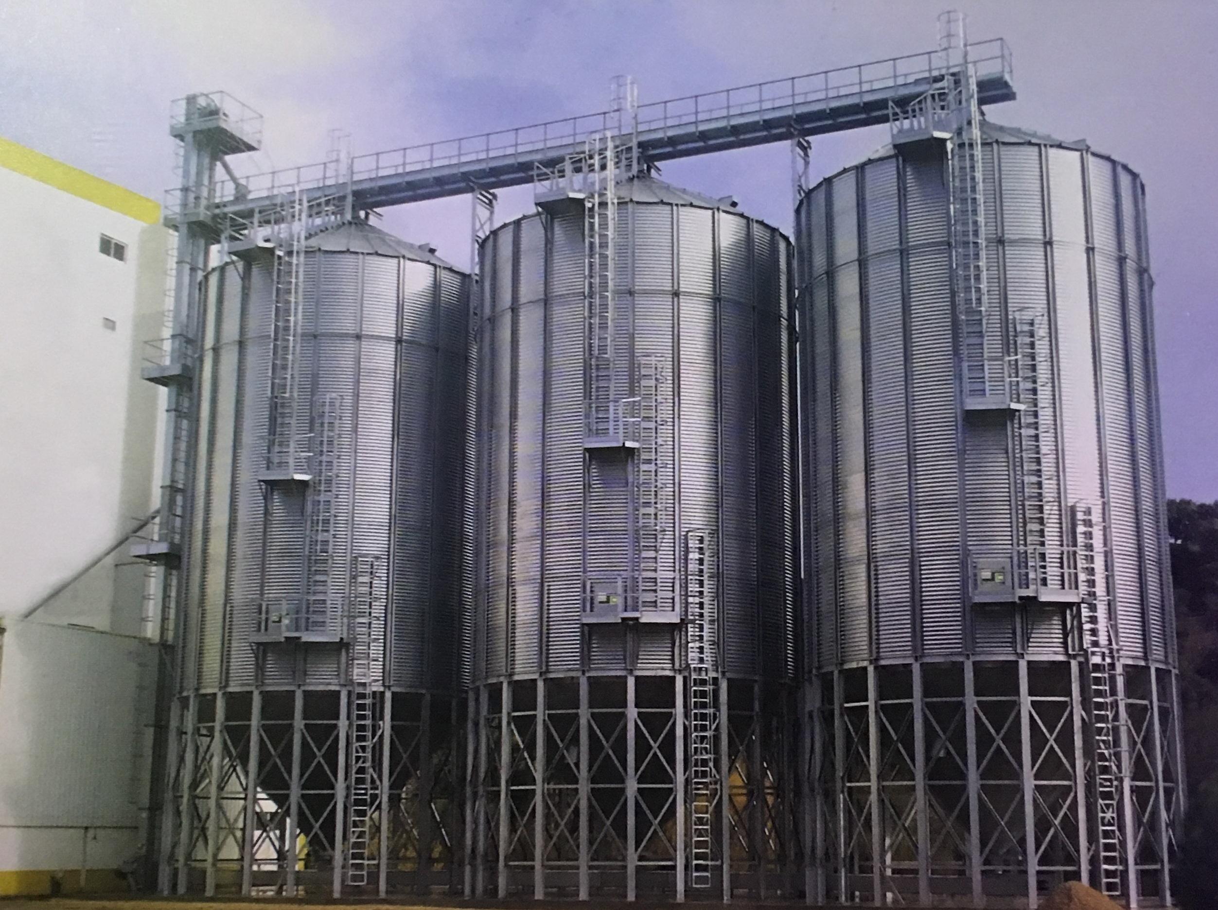 Hệ thống Si lô chứa ngũ cốc